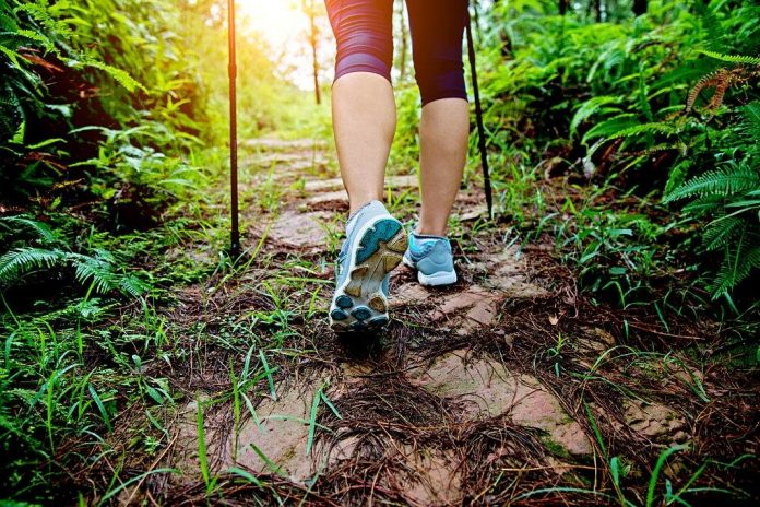 can i wear trail running shoes for hiking