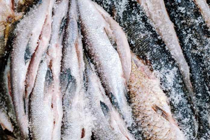 how to keep fish fresh without ice