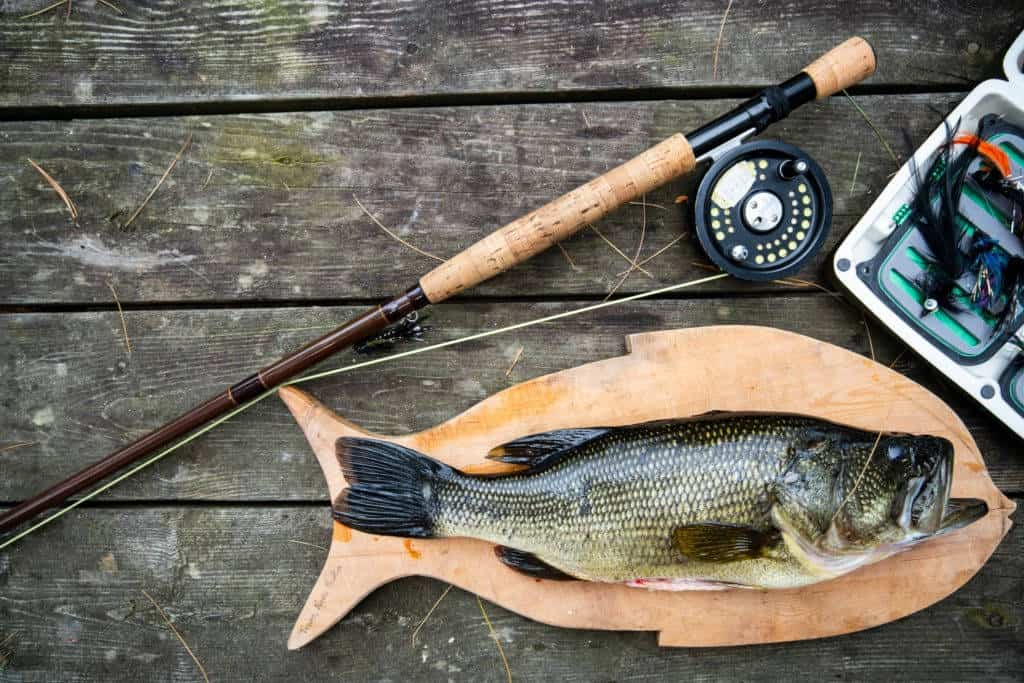 what does largemouth bass taste like