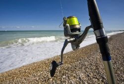 What Pound Test For Surf Fishing Do You Need: A Comprehensive Guide