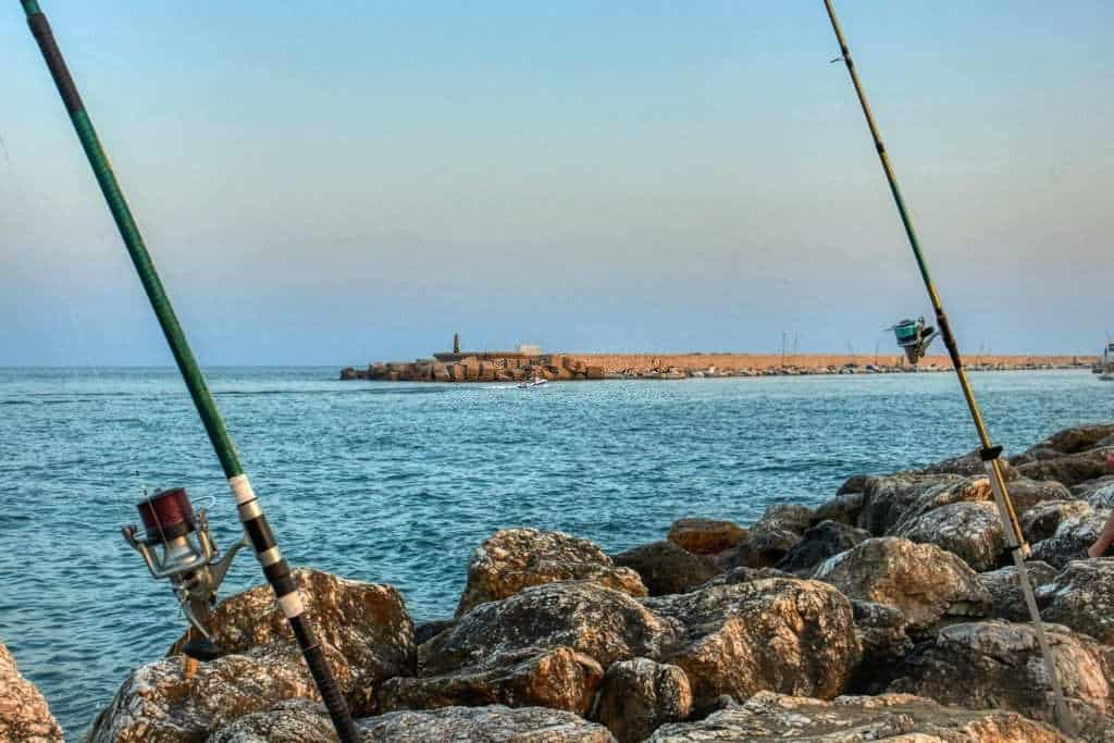 carbon fiber vs graphite fishing rod