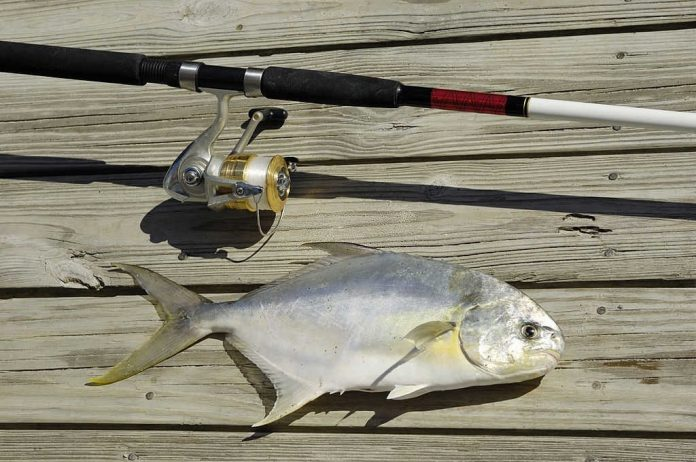 how to catch pompano in florida