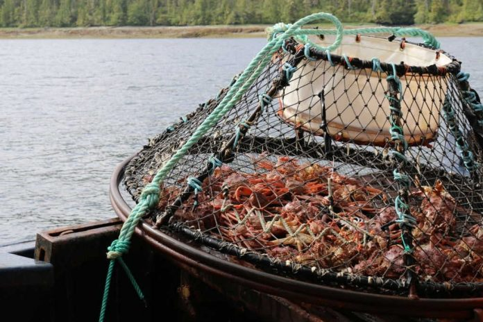 how long is opilio crab season in alaska