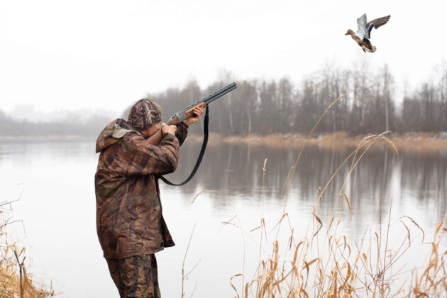 duck hunting essentials for beginners