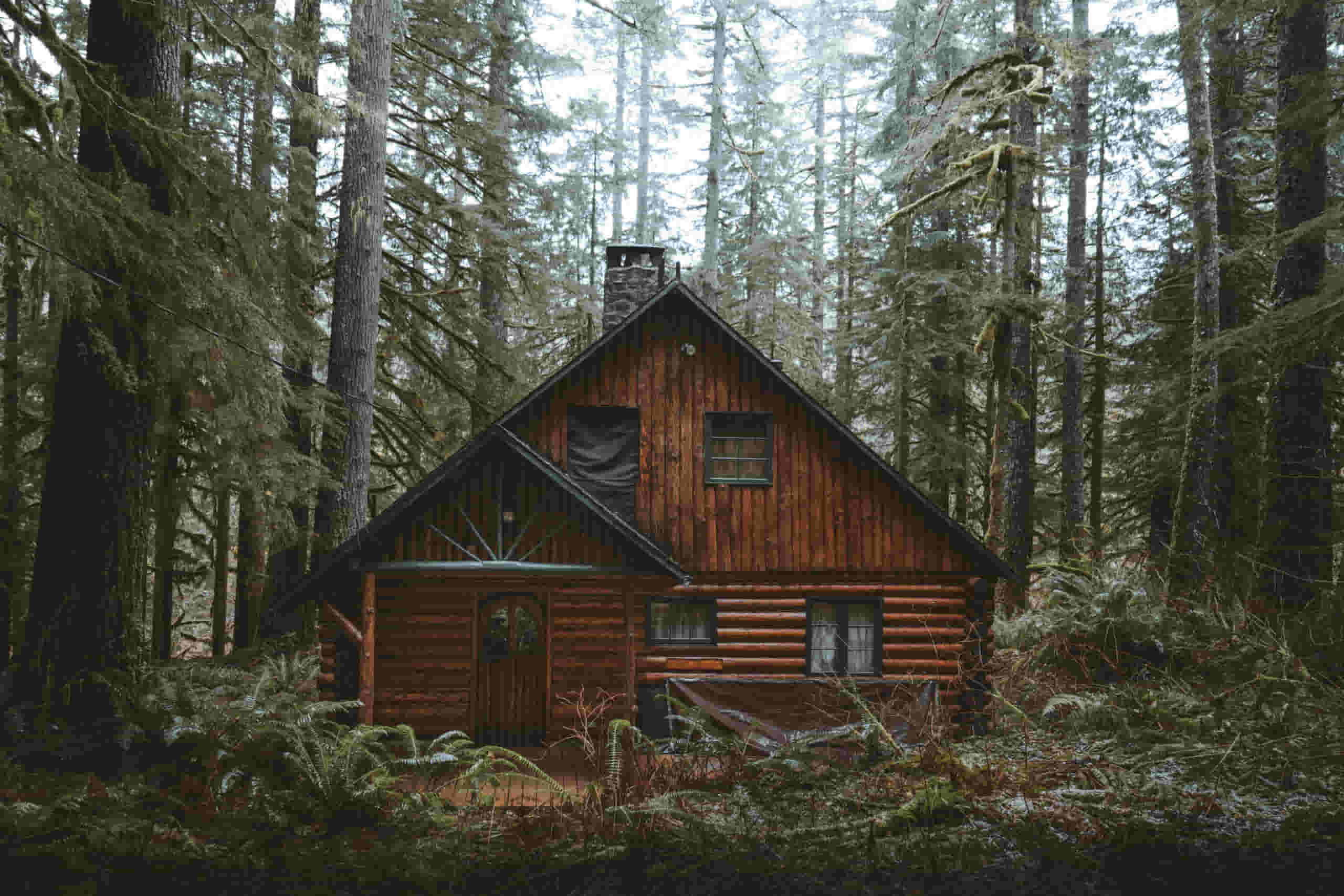 how to check your log cabin for repairs