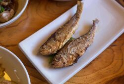 Are Corbina Good To Eat? Interesting Facts About Corbina Fish