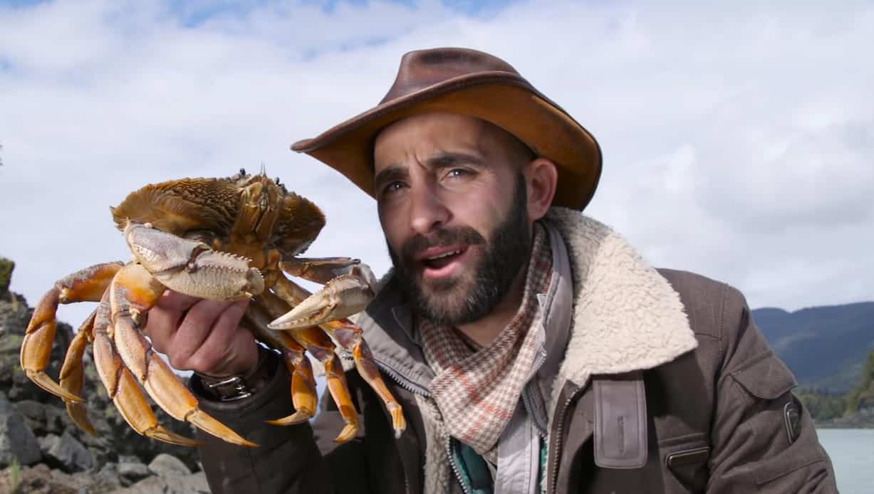 how to keep dungeness crab alive