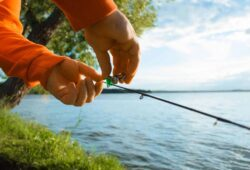 What Fish Are Biting This Time Of Year? Comprehensive Guide For Every Angler