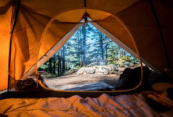 Fun Activities to Do When Camping in New Jersey