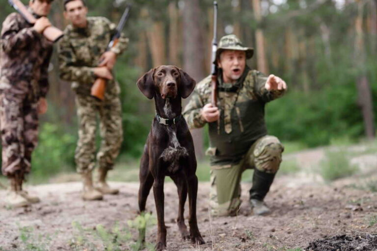 Hunting With or Without Dogs